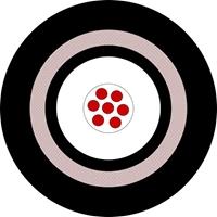 Bild für Kategorie Instrumentenkabel